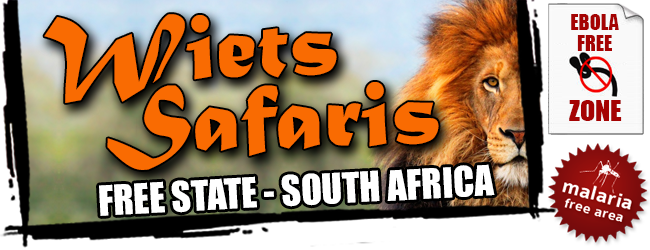 Wiets Safaris